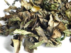 #healthandtea winter mountain white tea#healthandtea winter mountain white tea -1