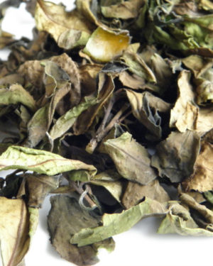#healthandtea winter mountain white tea#healthandtea winter mountain white tea -1